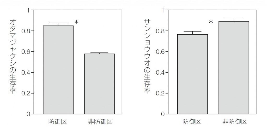 共食い強化の結果グラフ
