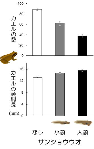 JAE2014日本語
